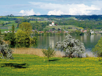 E-Bike-Tour Baldeggersee
