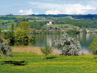 Route E Baldeggersee
